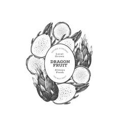 hand drawn dragon fruit design template organic vector image