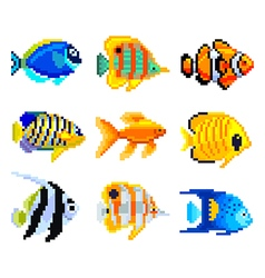 Pixel exotic fish for games icons set vector