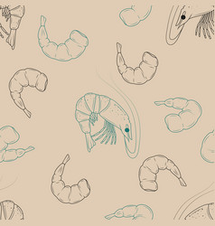 Seamless pattern made from shrimps hand drawn vector