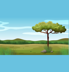 background scene with one tree in field vector image