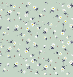 Daisy flowers seamless pattern vector