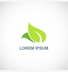 leaf organic logo vector image