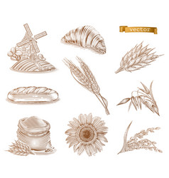 Mill bread and wheat old style engraving icon set vector