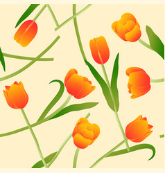 orange tulip on beige ivory background vector image