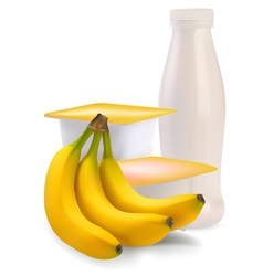 banana flavor vector image