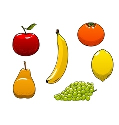 Fresh juicy and ripe isolated fruits vector image