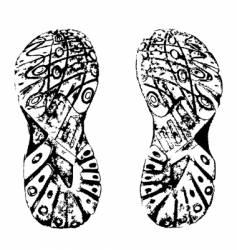 grunge shoe print vector image vector image