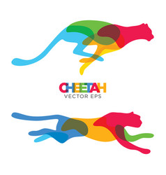 creative cheetah animal design vector image