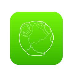 Earth icon green vector