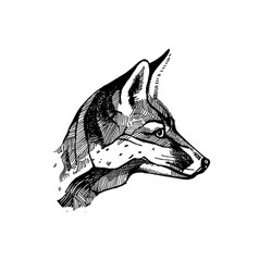 fox head drawing hands retro style sketch vector image