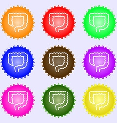 Large intestine icon sign Big set of colorful vector
