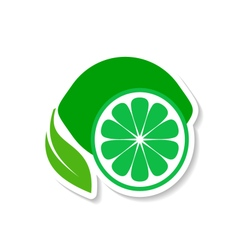 Lime fruit icon label vector image