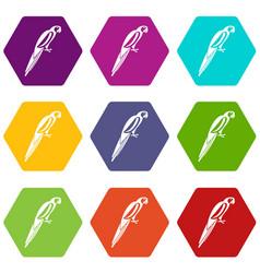 Parrot icon set color hexahedron vector