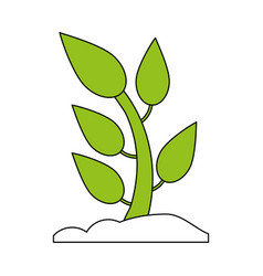 Plant in soil icon image vector