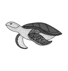 Sea turtle icon in monochrome style isolated on vector