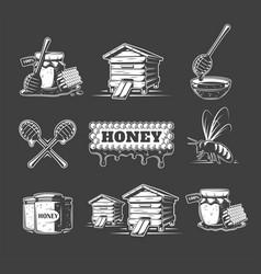 set elements honey vector image