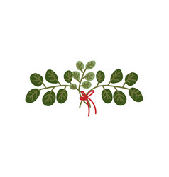 twigs with green leaves tied with red ribbon vector image