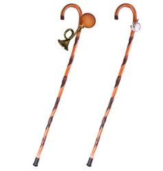 Walking Stick vector