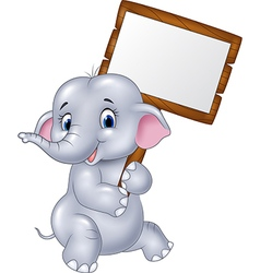Cute baby elephant holding blank sign vector image