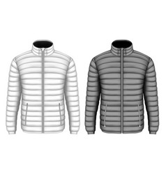 Mens insulated down jacket vector