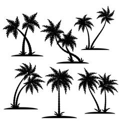 Palm silhouette set vector image