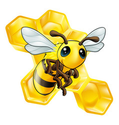 Cartoon bee with honeycomb vector