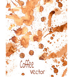 coffee paint splashes vector image