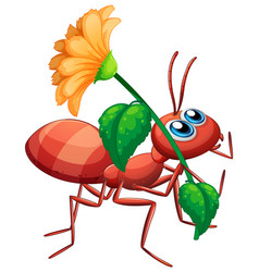 Cute ant cartoon character holding yellow flower vector
