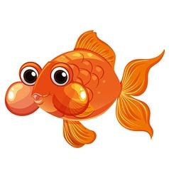 Goldfish swimming on white background vector image