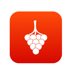 grapes on the branch icon digital red vector image