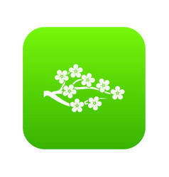 sakura icon digital green vector image