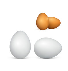 set couple white and brown eggs realistic 3d vector image