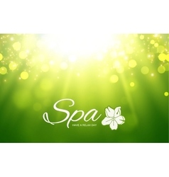 Spa Resort or Beauty Business vector image