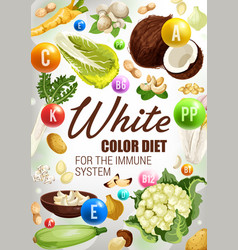 Vegetables nuts and spices of white color diet vector