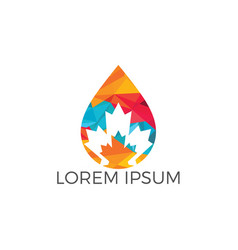 water drop and maple leaf logo design vector image