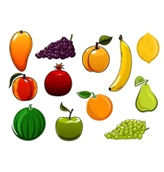 Isolated healthy organic sweet fruits set vector image vector image