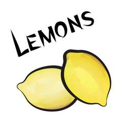 Lemon sign isolated lemon fruit tag fresh farm vector