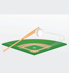 baseball bat ball and field vector image