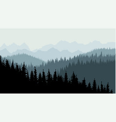 Evening or morning forest coniferous spruce vector
