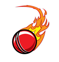 Flaming Cricket Ball vector