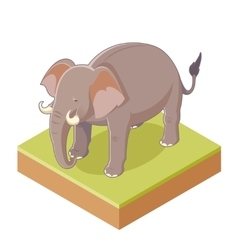 Isometric Gray Elephant vector image