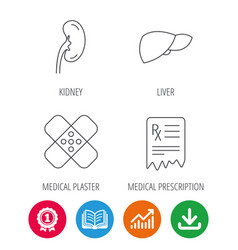 Liver medical plaster and prescription icons vector