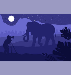 Photographer photographs elephant in nature vector