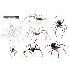 realistic spider halloween 3d icon set vector image