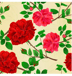seamless texture stems flower red and pink roses vector image