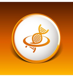 DNA icon life strand symbol curve graphic genetic vector image vector image