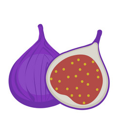fresh figs icon flat cartoon styleisolated on vector image vector image