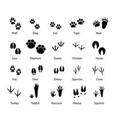 animals and birds feet tracks trails set vector image