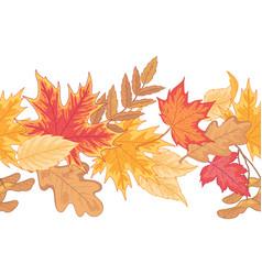 autumn seamless border vector image