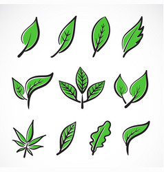 leaves icon set on white backgroundcollection vector image